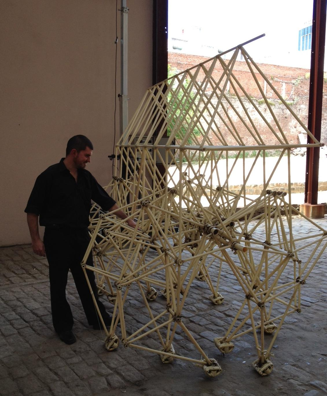 Me with a Strandbeest
